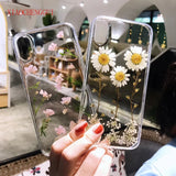 Real Flowers Dried Flowers Soft Back Cover For iPhone X 6 6S 7 8 plus - carolay.co phone case shop