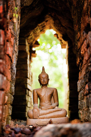 Buddha in temple ruin