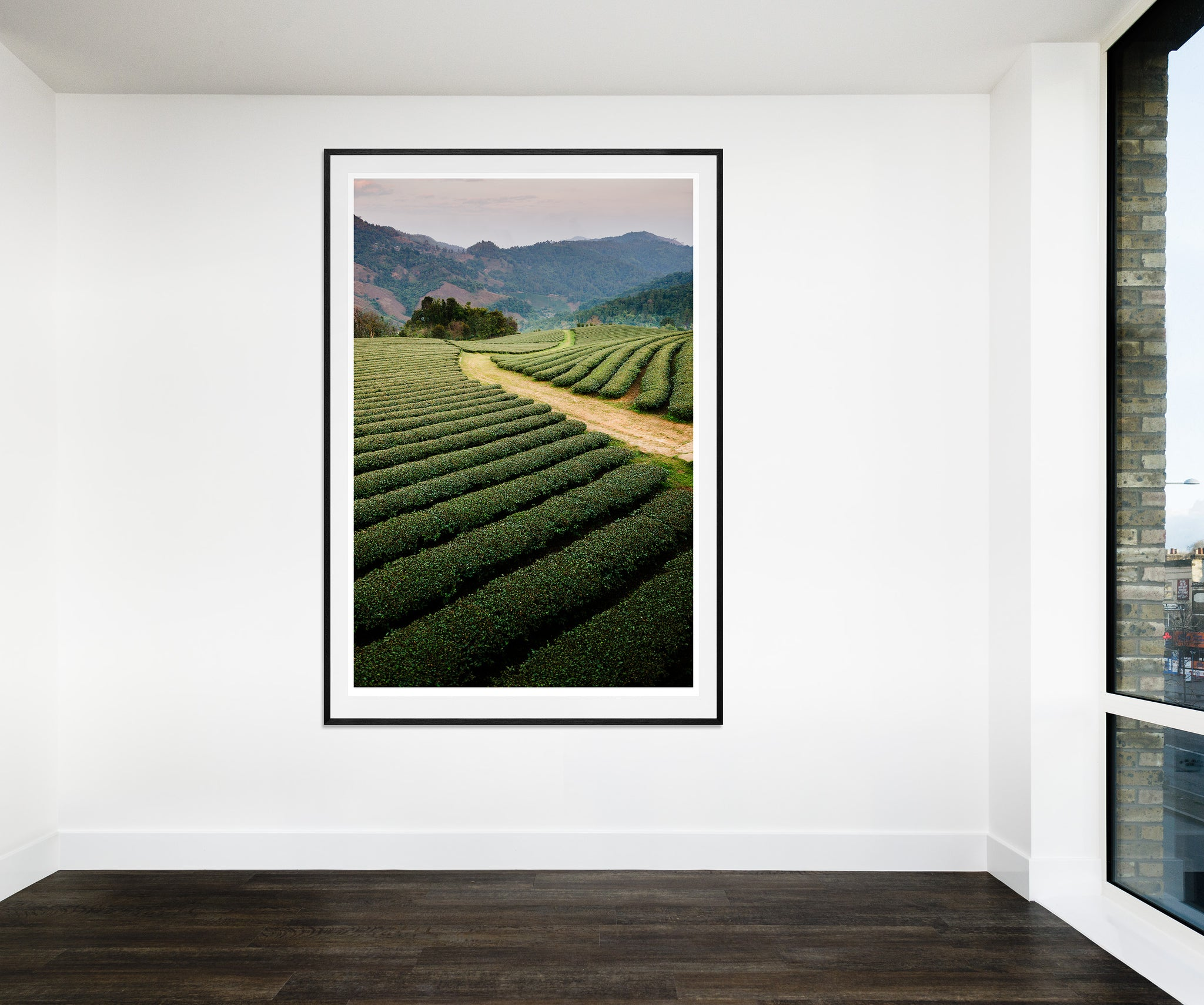 Mae Salong Tea Plantations, Thailand (136x203cm)