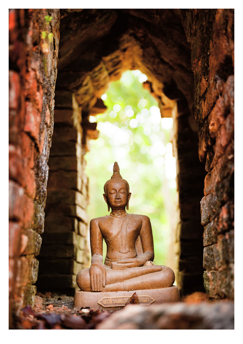 Buddha in temple ruin (42x59cm)