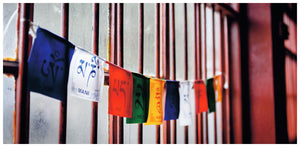 Dunggon Samten Choling Gompa Prayer Flags (254x127cm)