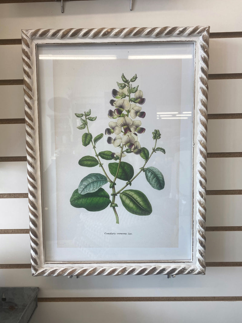 Floral Framed Print - Allure Boutique WY