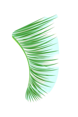 "Image of 20"" x 30"" Green Palm Fronds Fin Giclée Surf Art Print - Limited Edition 50"