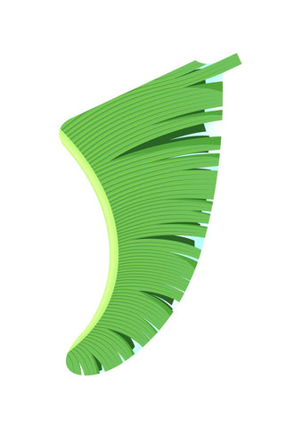 A3 Banana Leaf Fin Giclée Surf Art Print - Limited Edition 50