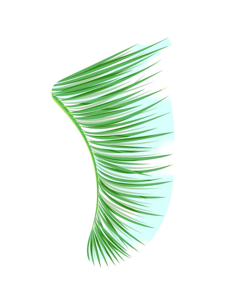 "8"" x 10"" Green Palm Fronds Fin Giclée Surf Art Print - Limited Edition 50"