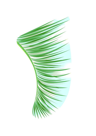 Image of A4 Green Palm Fronds Fin Giclée Surf Art Print - Limited Edition 50