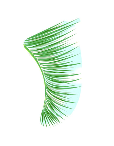 "Image of 11"" x 14"" Green Palm Fronds Fin Giclée Surf Art Print - Limited Edition 50"