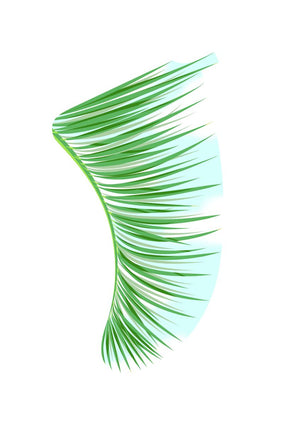 A5 Green Palm Fronds Fin Giclée Surf Art Print - Limited Edition 50