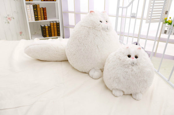 Plush Persian Cat