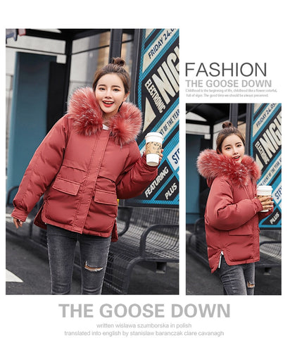 2018 Real New Arrival Down Jacket Winter Jacket