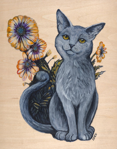 Cat with African Daisies