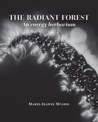The radiant forest