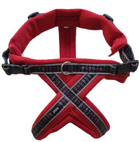 Ratia 8 Shape Harness