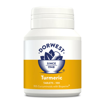 Dorwest Herbs Turmeric Tablets