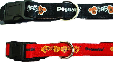 Dogmatic Dog Collar
