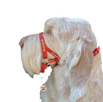 Dogmatic Dog Headcollar