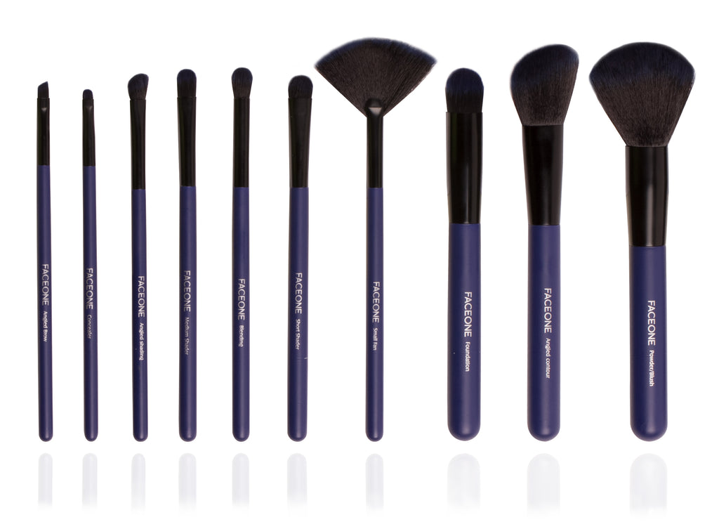 11 Piece Professional Make-Up Brush Set