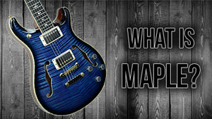 What is Maple? | The Music Gallery Glossary of Guitar Terms