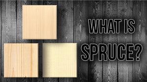 What is Spruce? | The Music Gallery Glossary of Guitar Terms