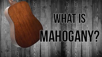 What is Mahogany? | The Music Gallery Glossary of Guitar Terms
