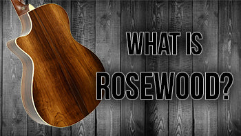 What is Rosewood? | The Music Gallery Glossary of Guitar Terms