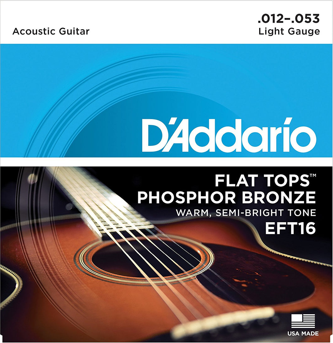 D'Addario EFT16 .012-.053 Flat Tops Light Acoustic Guitar Strings - The Music Gallery