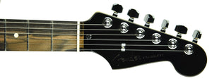 Fender Limited Edition American Professional Stratocaster w/Ebony Board US19032131 - The Music Gallery
