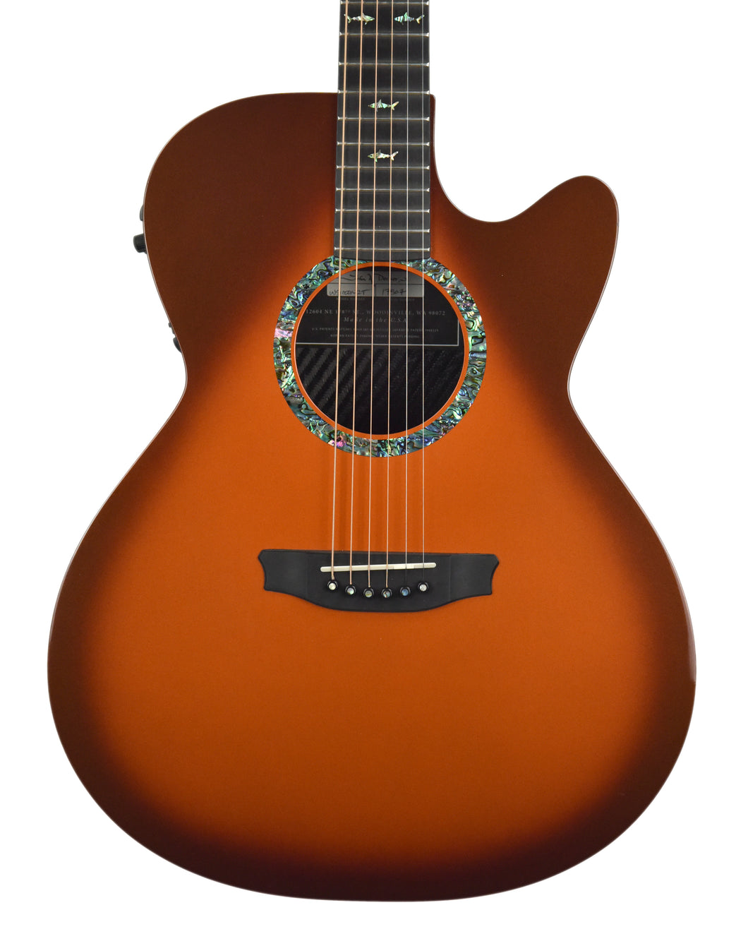 Used Rainsong WS1000N2T in Copperburst w/OHSC 17507 - The Music Gallery