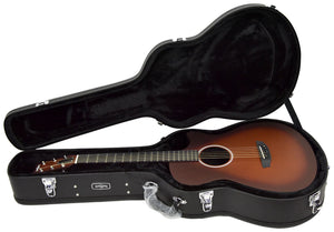 Rainsong Al Petteway Special Edition Carbon Fiber Acoustic Electric 19320 | The Music Gallery | Open Case
