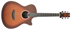 Rainsong Al Petteway Special Edition Carbon Fiber Acoustic Electric 19320 | The Music Gallery | Front Far