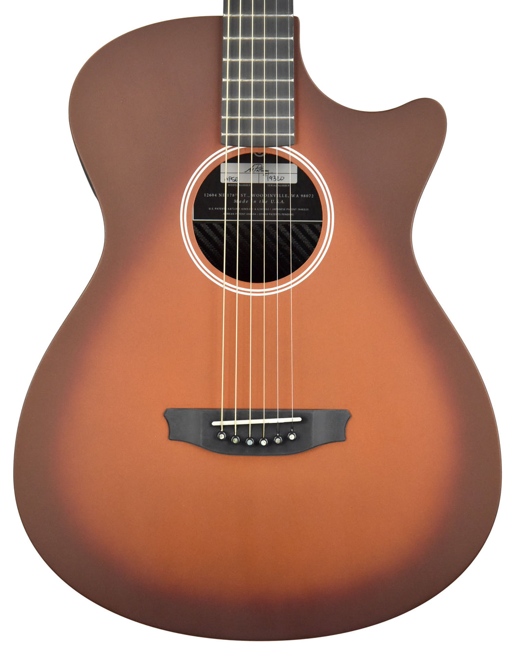 Rainsong Al Petteway Special Edition Carbon Fiber Acoustic Electric 19320