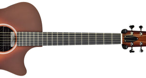 Rainsong Al Petteway Special Edition Carbon Fiber Acoustic Electric 19320 | The Music Gallery | Neck Front