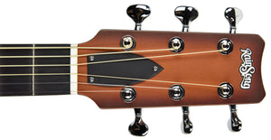 Rainsong Al Petteway Special Edition Carbon Fiber Acoustic Electric 19320 | The Music Gallery | Headstock Front