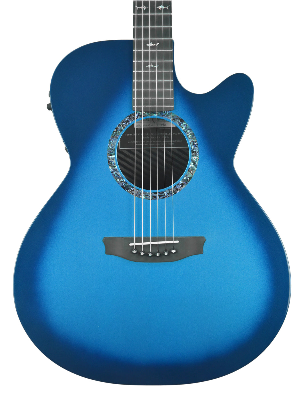 Rainsong WS-1000N2 Acoustic Guitar in Marine Burst | Front