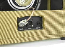 Thumper 5 Watt 1x10 Combo All Tube Headphone Amp in Tweed | The  Music Gallery outputs