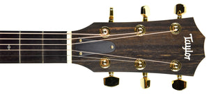 Taylor 224ce-K Deluxe Acoustic Electric Guitar 2106189600 | The Music Gallery | Headstock Front