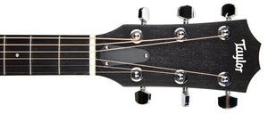 Taylor 114ce Acoustic Electric Guitar | The Music Gallery | Headstock front