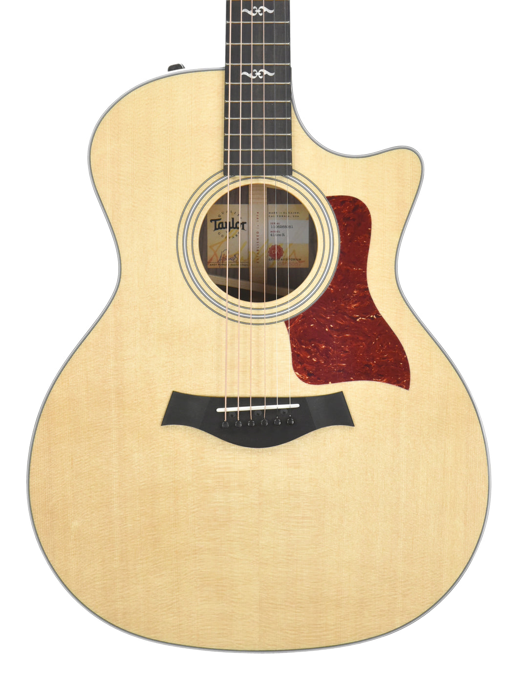 Taylor 414ce-R Acoustic Guitar with V Class Bracing | Front