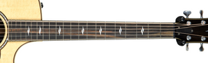 Taylor 814CE Deluxe V Class Bracing w/OHSC SN 1109188094
