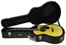 Rainsong V-OM1000NSX Acoustic Electric Guitar 19722
