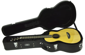 Rainsong V-PA1100NS Vintage Series Hybrid Acoustic Guitar 19776 - The Music Gallery