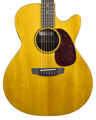 Rainsong V-WS1000N2X Carbon Fiber Hybrid Acoustic-Electric 20195