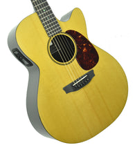 Rainsong V-WS1000N2X Vintage Series Hybrid Acoustic Guitar 19789 - The Music Gallery