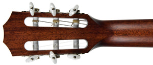 Taylor 312ce-n | The Music Gallery | Headstock Back
