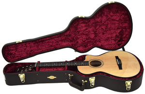 Taylor 312ce-n | The Music Gallery | Open Case