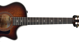 Taylor 322ce 12-Fret | The Music Gallery | Neck Front