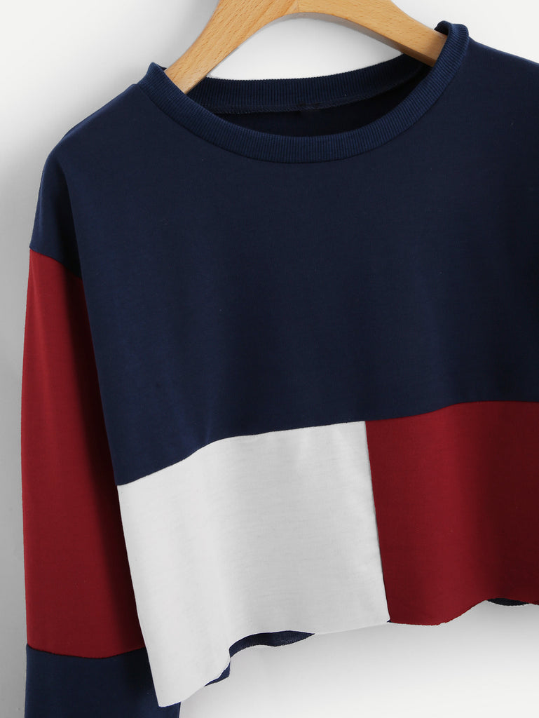 Cut And Sew Crop Sweatshirt (2)