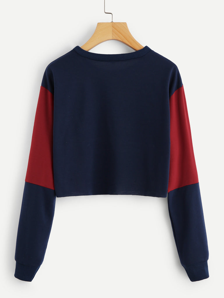 Cut And Sew Crop Sweatshirt (3)