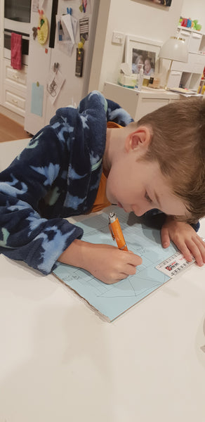 Gifted education - my son doesn't fit inside the curriculum