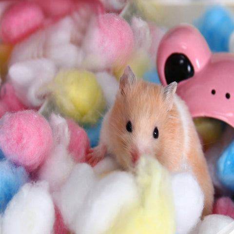 100Pcs Colorful Cotton Balls for hamster